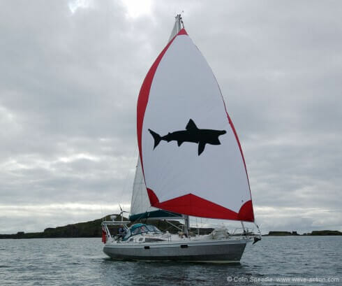 We have improved her light airs performance with an asymmetrical spinnaker, which sets from a gennaker furler mounted on a detachable bowsprit. And the shark? Pelerin is French for basking shark, a creature which played a large part in our previous life.