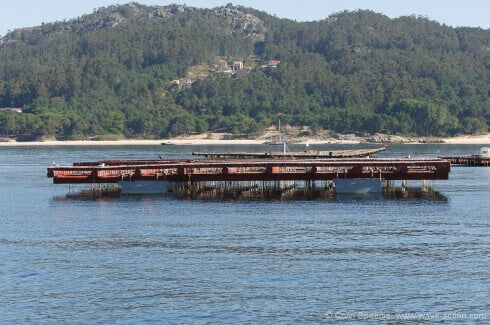 A viveiro - there are literally thousands of these structures throughout the Rias, mainly supporting mussel cultivation, but other shellfish such as queen scallops are now being raised, too.