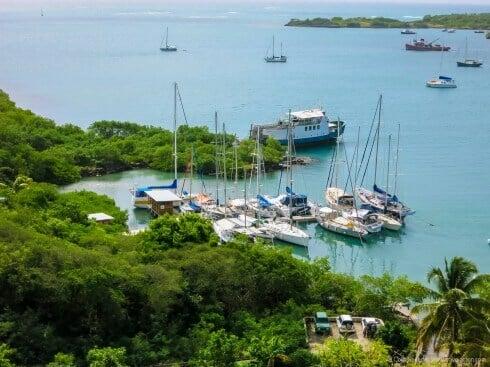 A marina on a human scale, Whisper Cove, Grenada