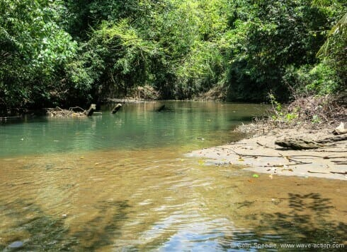 The tranquil Indian River- Dominica