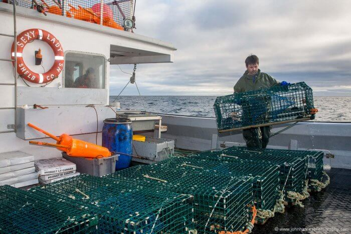 The working deck of a Cape Island lobster boat.
